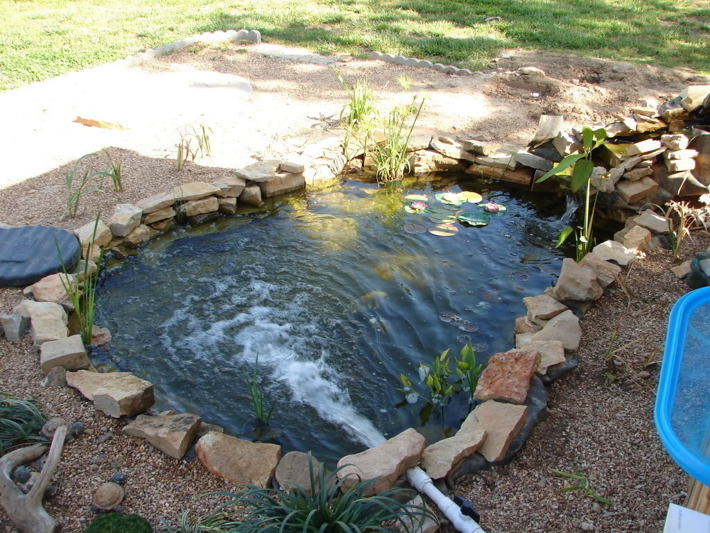Homemade fish pond filter system homemade free engine for Creating a pond